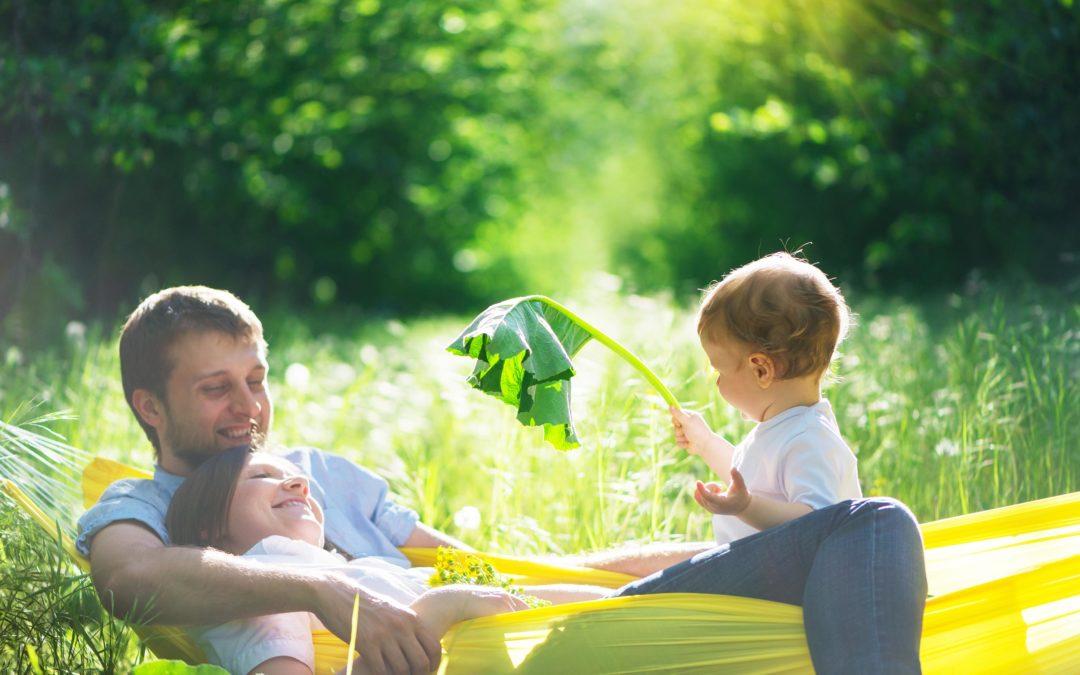 Erbschaftsteuer – diese Rahmenbedingungen sollten Sie kennen